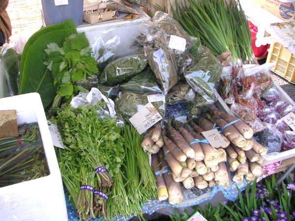 Takayama Jinya morning market June2006 2