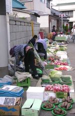 Katsuura morning market Nov 2005