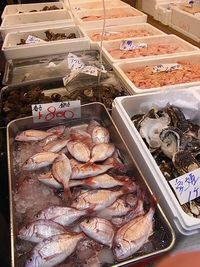Tsukiji Market wholesale area (11)