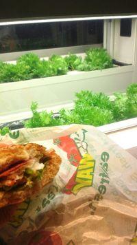 Subway Marunouchi (4)