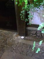 Mori-shio (2)