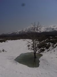 20140428 Shiretoko National Park (18)