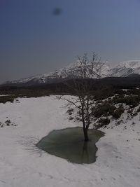 20140428 Shiretoko National Park (18)