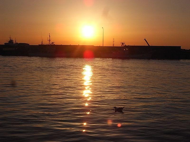 20140429 1 Monbetsu Port (61)
