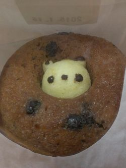 Shiretoko Doughnut (5)
