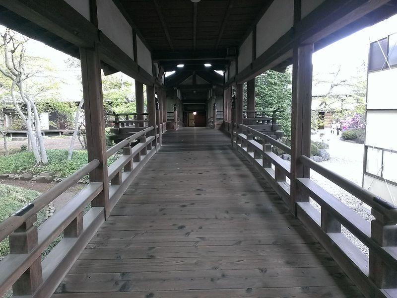 喜多院 (9)