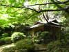 Japanese_garden_2